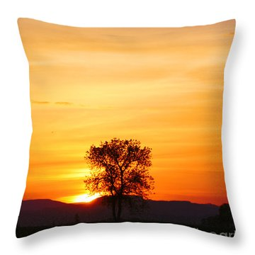 Lone Tree Sunset Throw Pillow by Nick Gustafson
