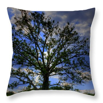 Lonely Tree Throw Pillow by Kevin Hill