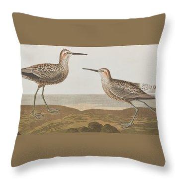 Long-legged Sandpiper Throw Pillow by John James Audubon