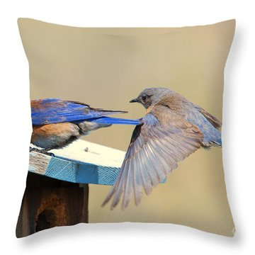 Look Behind You Throw Pillow by Mike Dawson