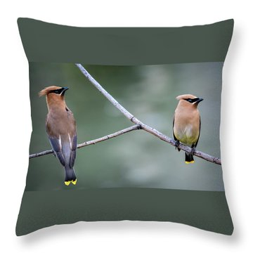 Looking To The Right Throw Pillow by Omer Vautour