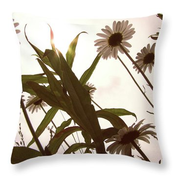 Looking Up Throw Pillow by Amy Tyler