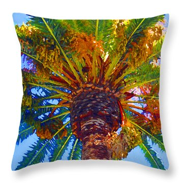 Looking Up At Palm Tree  Throw Pillow by Amy Vangsgard