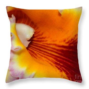Lotsa Color Throw Pillow by Sabrina L Ryan
