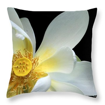 Lotus From Above Throw Pillow by Sabrina L Ryan