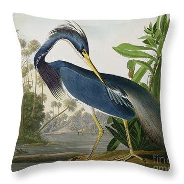 Louisiana Heron Throw Pillow by John James Audubon