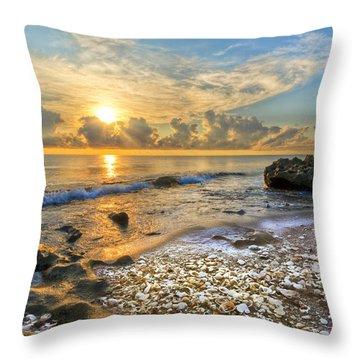 Low Tide Throw Pillow by Debra and Dave Vanderlaan