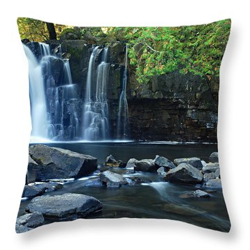 Lower Johnson Falls Throw Pillow by Larry Ricker