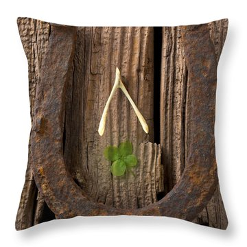 Lucky Horseshoe Throw Pillow by Garry Gay