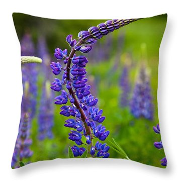 Lupine Curves Throw Pillow by Susan Cole Kelly