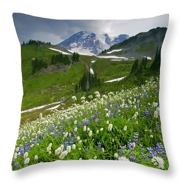 Lupine Storm Throw Pillow by Mike  Dawson
