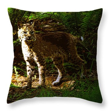 Lynx Rufus Throw Pillow by David Lee Thompson