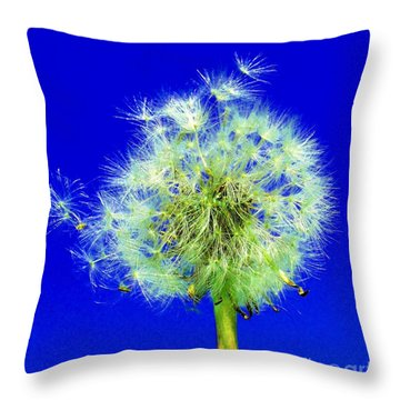 Throw Pillow featuring the digital art Make A Wish by Rodney Campbell