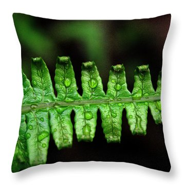 Manoa Fern Throw Pillow by Jennifer Bright
