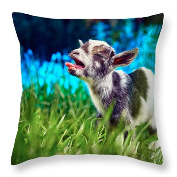 Baby Goat Kid Singing Throw Pillow by TC Morgan