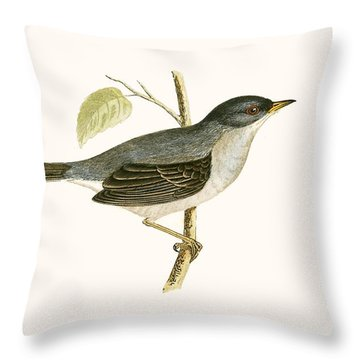 Marmora's Warbler Throw Pillow by English School