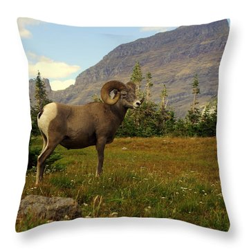 Master Of His Domain Throw Pillow by Marty Koch