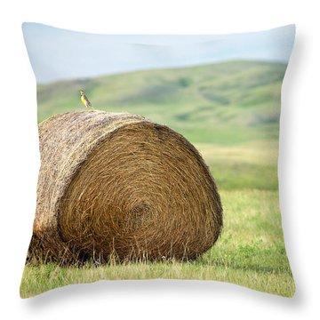 Meadowlark Heaven Throw Pillow by Todd Klassy