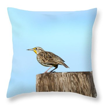 Meadowlark Roost Throw Pillow by Mike Dawson