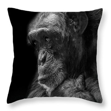 Melancholy Throw Pillow by Paul Neville