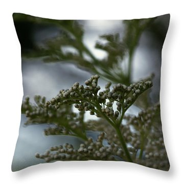 Mirrored Throw Pillow by Linda Shafer