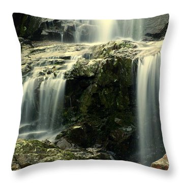 Missouri Beauty Throw Pillow by Marty Koch