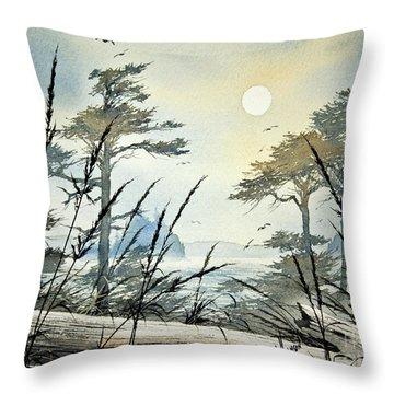 Misty Island Dawn Throw Pillow by James Williamson