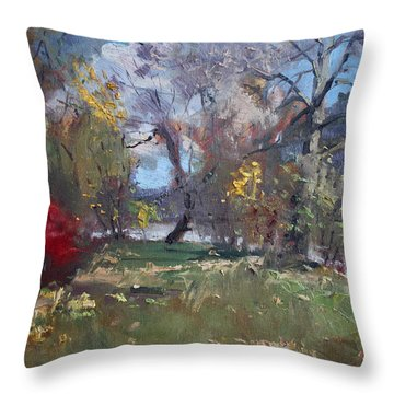 Mixed Weather In A Fall Afternoon Throw Pillow by Ylli Haruni