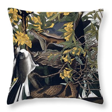 Mocking Birds And Rattlesnake Throw Pillow by John James Audubon