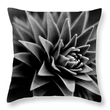 Monkey Puzzle Throw Pillow by Venetta Archer