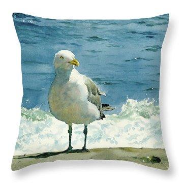 Montauk Gull Throw Pillow by Tom Hedderich