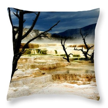 Moody Minerva Throw Pillow by Lana Trussell