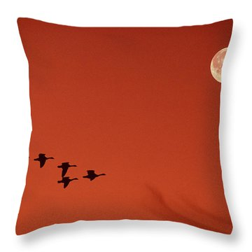 Moonset Throw Pillow by Tony Beck