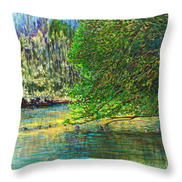 Morning In The Glen Throw Pillow by Thomas Michael Meddaugh