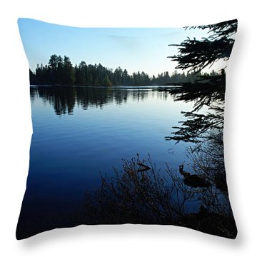 Morning On Chad Lake Throw Pillow by Larry Ricker