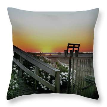 Morning View  Throw Pillow by Skip Willits