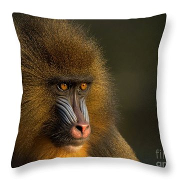 Mother's Finest Throw Pillow by Jacky Gerritsen