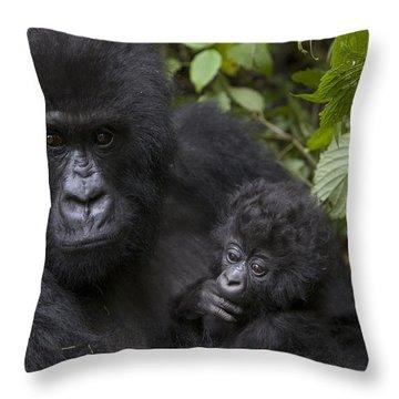Mountain Gorilla Mother Holding 3 Month Throw Pillow by Suzi Eszterhas