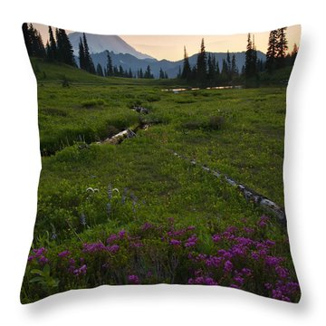Mountain Heather Sunset Throw Pillow by Mike  Dawson