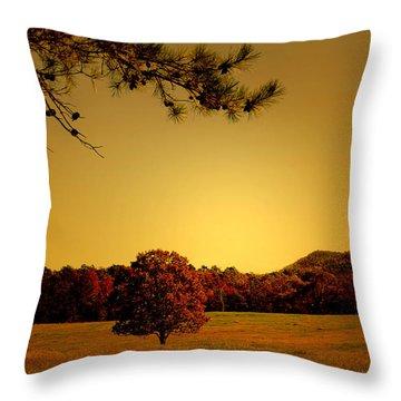 Mountain Valley Throw Pillow by Nina Fosdick