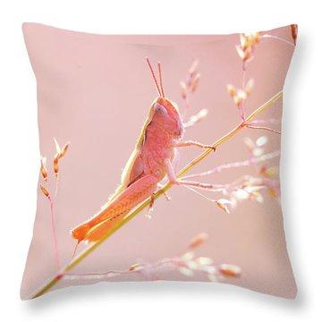 Mr Pink - Pink Grassshopper Throw Pillow by Roeselien Raimond