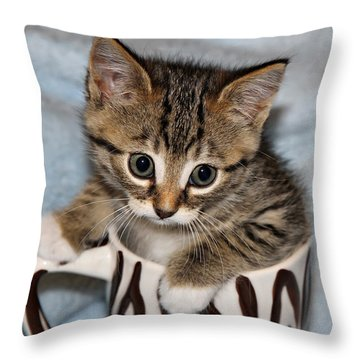 Mug Kitten Throw Pillow by Teresa Zieba