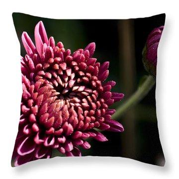 Mums Throw Pillow by Svetlana Sewell