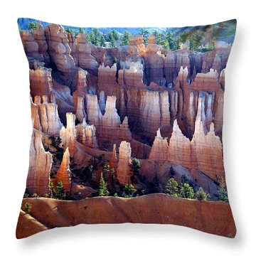 Muted Bryce Throw Pillow by Marty Koch
