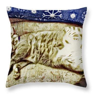 Nap Position Number 16 Throw Pillow by David G Paul