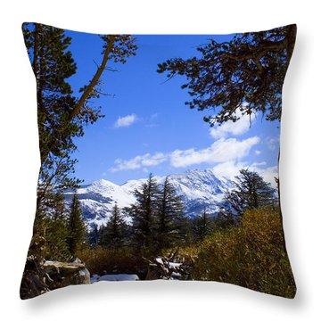 Naturally Framed Throw Pillow by Chris Brannen