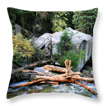 Nature's Filters Throw Pillow by Kristin Elmquist