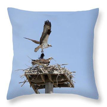 Nesting Osprey In New England Throw Pillow by Erin Paul Donovan