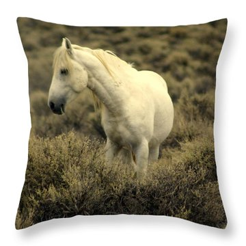Nevada Wild Horses 4 Throw Pillow by Marty Koch