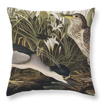 Night Heron Or Qua Bird Throw Pillow by John James Audubon